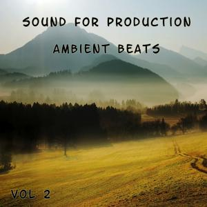 Sound For Production: Ambient Beats, Vol. 2