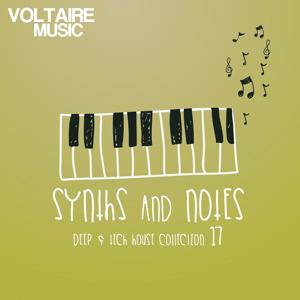 Synths and Notes 17