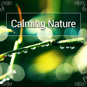 Calming Nature – Relaxation, Peace, Water Sounds