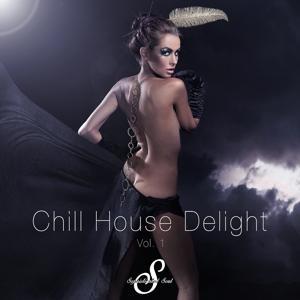 Chill House Delight, Vol. 1