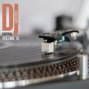 DJ Central - Groove, Vol. 12