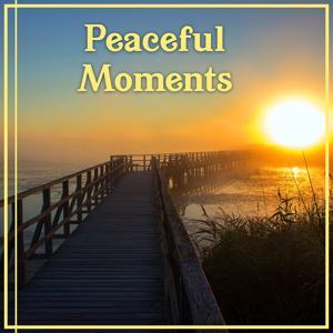Peaceful Moments: Meditation & Relaxation Healing Music & Pure Massage & Yoga