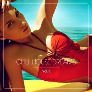 Chill House Dreams, Vol. 3