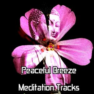 Peaceful Breeze Meditation Tracks