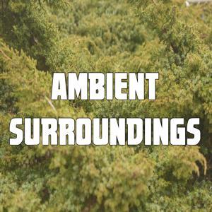 Ambient Surroundings