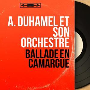 Ballade en Camargue