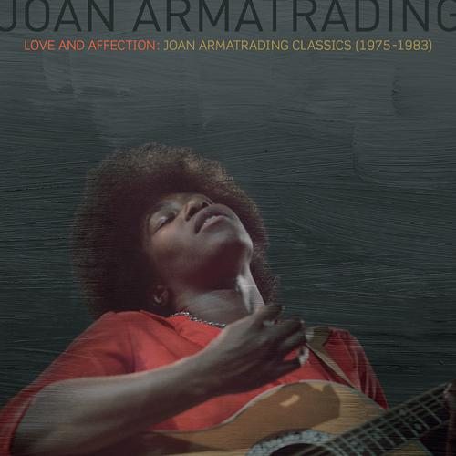 flight of the wild geese joan armatrading