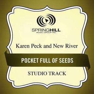 Pocket Full Of Seeds (Studio Track)
