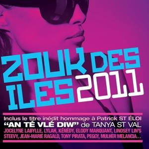 Zouk des iles 2011 (16 French Caribbean Hits)