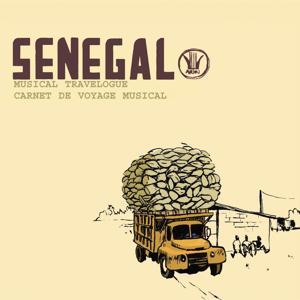 Carnet de Voyage : Mali, Guinée, Sénégal